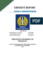 Experiment Report Respirasi&Fotosintesis