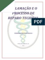 INFLAMAÇÃO E O PROCESSO DE REPARO TECIDUAL.docx