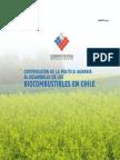 Politica_Agraria_Biocombustibles.pdf