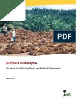 Biofuels in Malaysia