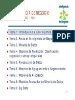 Inteligencia de Negocios.pdf