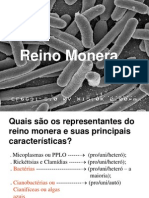 reino monera.ppt