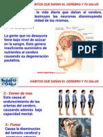 Hábitos que dañan al cerebro.pps