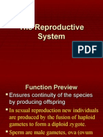 Reproductive System.ppt