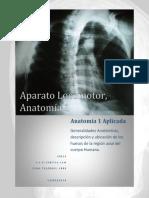 El aparato locomotor está constituido por el sistema osteoarticular y el sistema muscular.docx