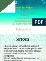 my bio 1