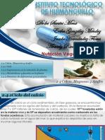 EXPO CICLOS CaMgA.pptx