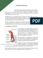 TORSIÃ_N_TESTICULAR[1].docx