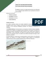12._tejidos_de_secrecin_interna.pdf