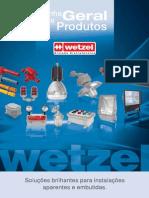 Wetzel_2009.pdf