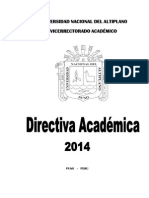 213726220-Directiva-Academica-2014-pdf.pdf