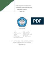 LAPORAN PRAKTIK KEBIDANAN KOMUNITAS.doc