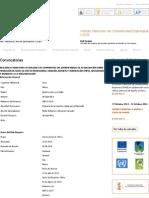IVACE - Internacional.pdf
