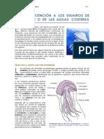 MEDUSAS_completa.pdf
