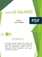 lodos salados (1).pdf