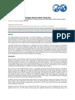 spe113843.pdf