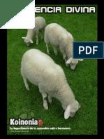 Koinonia-Obra.pdf