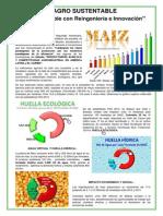 Reingeniería e Innovación.pdf