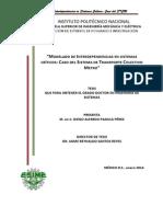 Tesis Doctoral Diego A. Padilla A110754.pdf