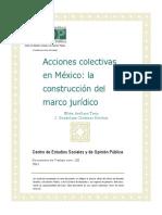 Acciones_colectivas_mexico_docto120.pdf