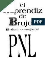 APRENDIZDEBRUJO2.PDF
