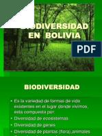 BIODIVERSIDAD   EN  BOLIVIA.ppt