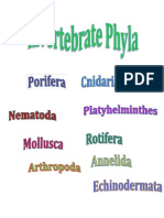 Invertebrate Phyla Titles