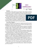 lara_pato.pdf