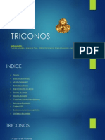 TRICONOS.pdf