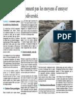 PAO OK.pdf
