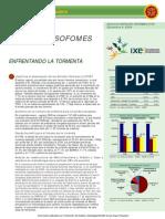 Sectorial_Sofoles_2T09.pdf