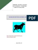 manejogeral.pdf