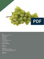 guia vinificacion.pdf