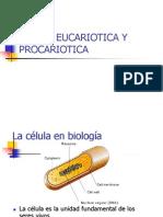 UNIDAD I CLASE 2 - CELULA EUCARIOTICA Y PROCARIOTICA.pptx