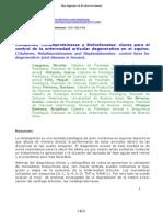 ETT EQUINO - Articulacion.pdf