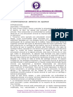 ETT EQUINO - Artritis.pdf