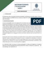 86299970-Guia-de-Inmucromatografia-y-Floculacion-1.docx