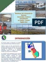 PESQUERIA HUACHO_SITUACION ACTUAL.pptx