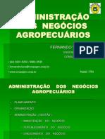 apresentação-ADMINISTRAÇÃO DOS NEGÓCIOS AGROPECUÁRIOS CERTO.ppt