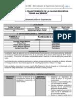 SISTEMATIZACION principal.pdf