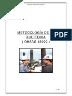 ManualAuditoriaOHSAS.pdf