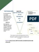 Monografia V heuristica.docx