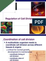 Ch12 Mitosis Regulation