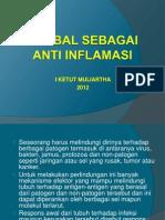 Herbal Sebagai Anti Inflamasi