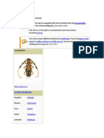Longhorn beetle.docx
