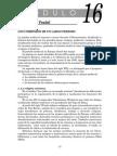 MODULO 16+18a20.pdf