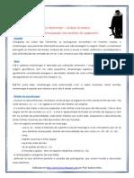 Mensagem+Os Lusíadas - Mostrengo e Adamastor (blog12 12-13).pdf
