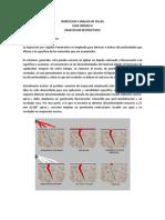 Guia Inspeccion y Analisis de Fallas Unidad III.docx