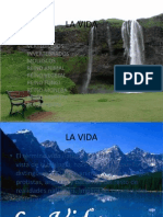 reinosdelanaturaleza-121024170234-phpapp01.pptx