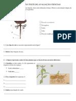 PREPARAÇÃO TESTE DE AVALIAÇÃO CIENCIAS.docx